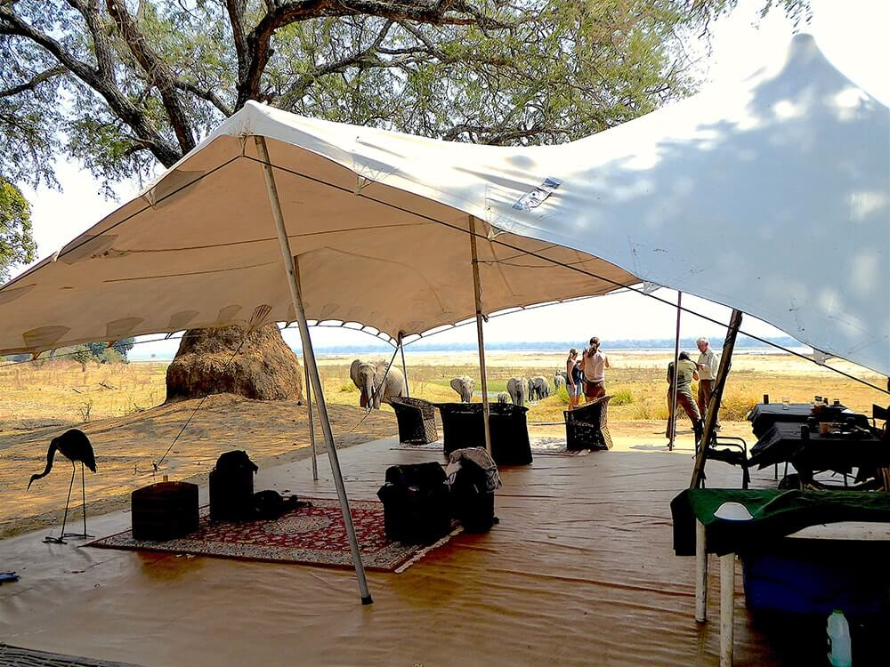 Camp Mana - Safari Camp - Mana Pools, Zimbabwe
